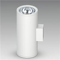 COB 50W*2 LED户外壁灯